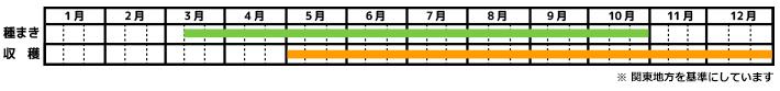 小松菜_栽培カレンダー