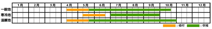 ナス_栽培カレンダー