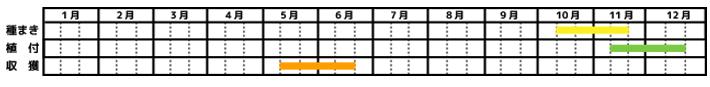 そら豆_栽培カレンダー