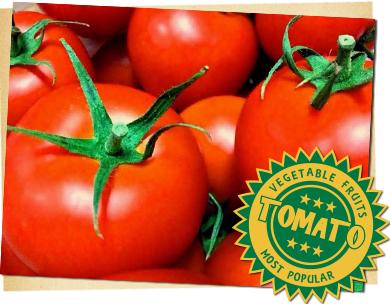 トマトの栽培方法